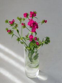 Bloemsierkunst-Groeneveld-zomerbloemen-duizendschoon