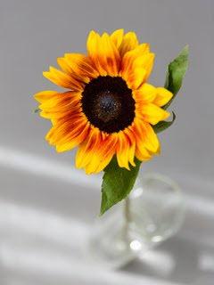 Bloemsierkunst-Groeneveld-zomerbloemen-zonnebloem