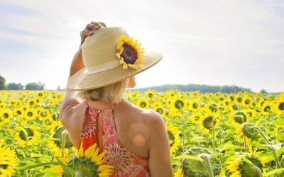 Blijf genieten van bloemen bij warm weer
