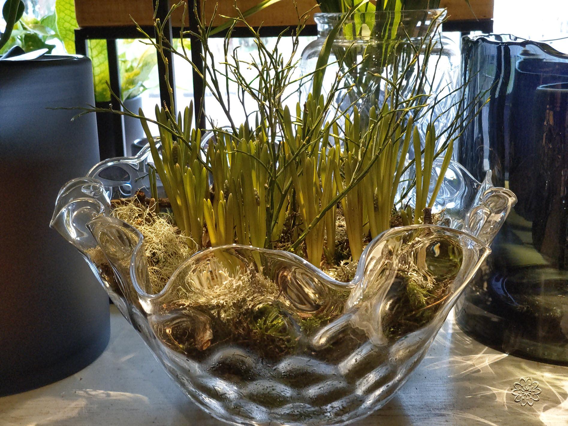 Bloemsierkunst-Groeneveld-kamerplanten-bollen-06
