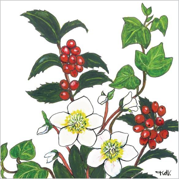Bloemenkaarten Bloemsierkunst Groeneveld Tineke van der Veen