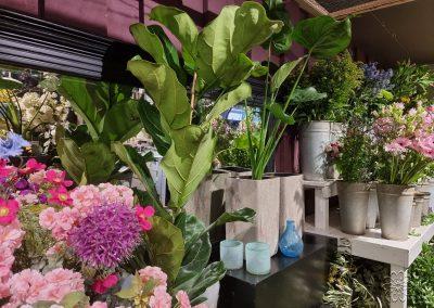 Bloemsierkunst Groeneveld zomeraanbod planten