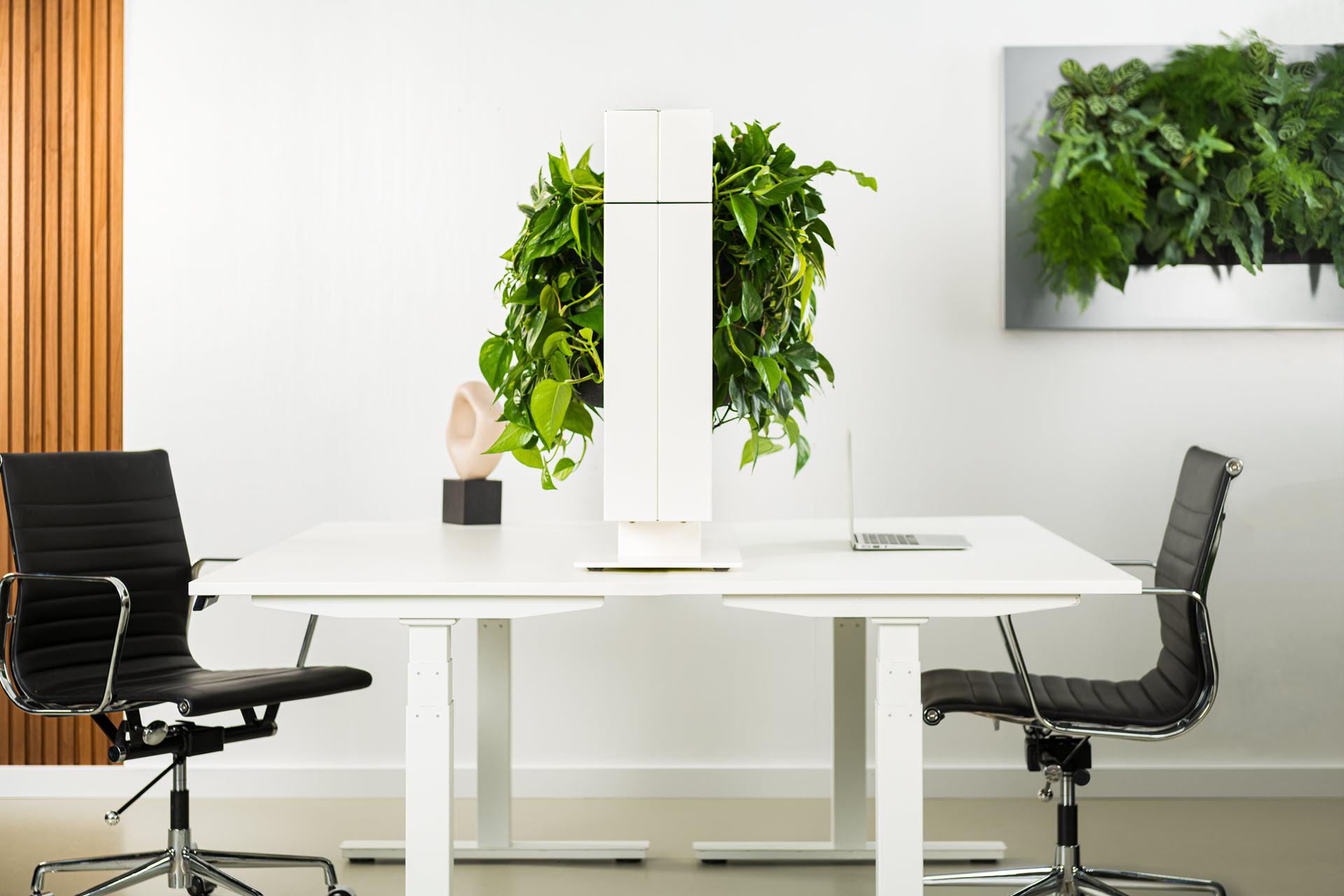 Verticale tuin voor binnen en buiten. Eenvoudig en snel te monteren. Geschikt voor huiskamer, kantoor of tuin. Alles-in-1 systeem en inclusief planten.