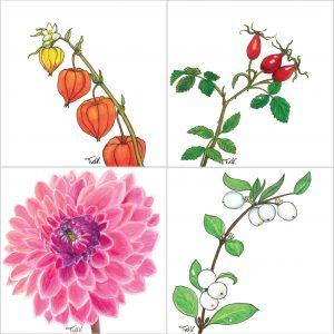 Bloemsierkunst Groeneveld boeket bestellen met luxe herfst bloemenkaart